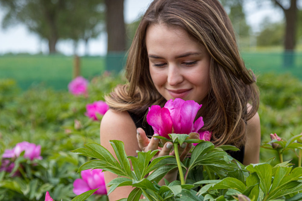 model with Peonies from Netherlands
